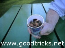 Fill the cup with coins