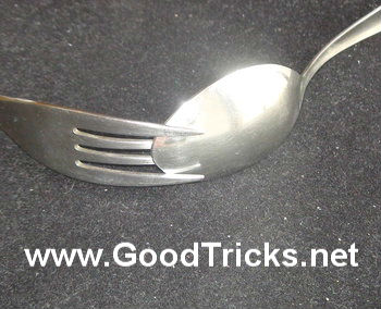 View the set up of the spoon & fork with the first and last tines of the fork overlapping the spoon.